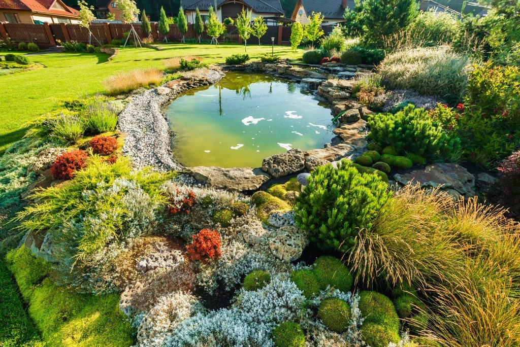 Landscaping design and pond